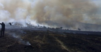 Огънят край Свиленград се разраства, стихията най-близо до Равна гора