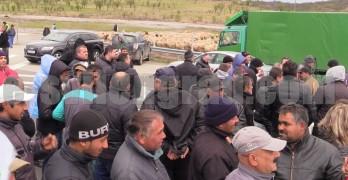 Животновъди блокираха магистралата заради спряната дезинфекция на границата