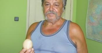 Кокошка снесе гигантско яйце