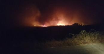 Гъсти облаци дим над Свиленград от пожара край Българска поляна
