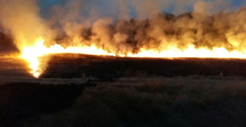 Свиленградчанин и внукът му предизвикали големия пожар край Маджарово