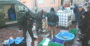Търговците в Свиленград не променят цените за тазгодишния Никулден