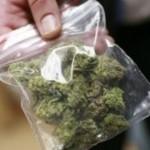 Младежи хванати с марихуана в Свиленград