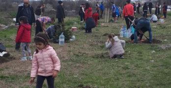 Свиленград даде началото на мащабна доброволческа акция за залесяване на България
