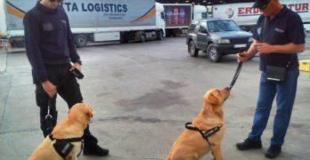 """Митнически кучета се включват в борбата с контрабандата на МП """"Капитан Андреево"""""""
