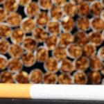 """Над 25 млн. къса безакцизни цигари и над 1.5 тона тютюн бяха унищожени под контрола на Агенция """"Митници"""""""