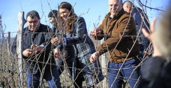 Министър Порожанов заряза в Свиленград