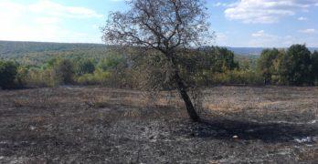 Свиленградските пожарникари спасиха крепостта Букелон в Маточина