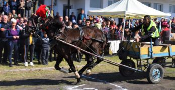 Традиционна кушия проведоха в село Бисер, Харманлийско