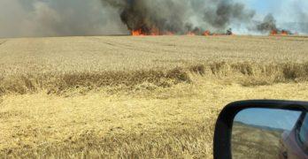 """Колата на пожарникар се подпали в движение до магистрала """"Марица"""", подпалиха неожъната нива с жито"""