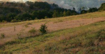 Бурен пожар се разрази между харманлийските села Рогозиново и Българин