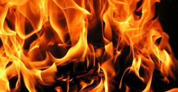 Пожар на голяма площ между Оряхово и Георги Добрево, Любимчанско