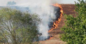 Пожар на широк фронт бушува край Момково, Свиленградско /обновена с видео/