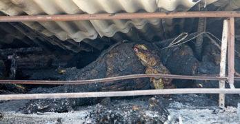 Късо съединение е вероятната причина за вчерашния голям пожар в село Белица, община Любимец