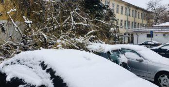 Електрозахранването е възстановено в почти всички населени места в Хасковско