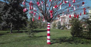 """Ръчно изработени мартеници """"разцъфнаха"""" на дърво в центъра на Любимец"""