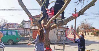 """Мъже се катерят по дървета, за да разкрасят парк """"Сухата река"""" в Свиленград /снимки + видео/"""