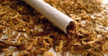 Селянин от Чучулига краде тютюн от бензиностанция
