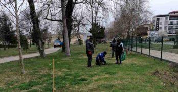 Дръвчета, дарени от Гората.бг, засади Общинското предприятие в Свиленград