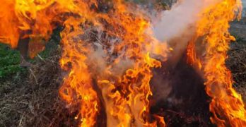 В Любимец се подпали бивша автоморга
