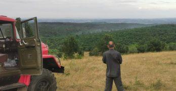 Пожарът в Свиленградско е овладян