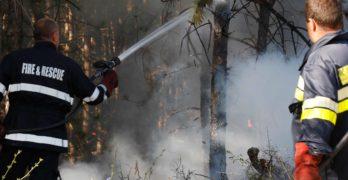 Свиленградската прокуратура наблюдава досъдебно производство за пожара в землището на Студена