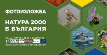 Зелени Балкани редят изложба в арт галерията в Свиленград